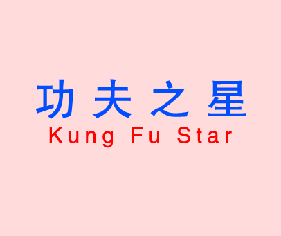功夫之星-KUNGFUSTAR