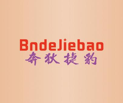 奔狄捷豹-BNDEJIEBAO