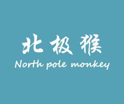 北极猴-NORTHPOLEMONKEY