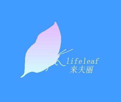 来夫丽-LIFELEAF