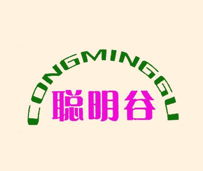 聪明谷-CONGMINGGU