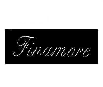 FINAMOVEFINAMORE