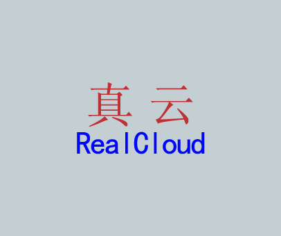 真云-REALCLOUD