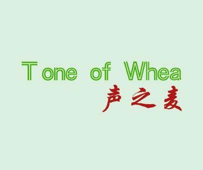 声之麦-TONEOFWHEA