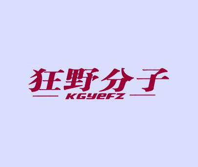 狂野分子-KGYEFZ