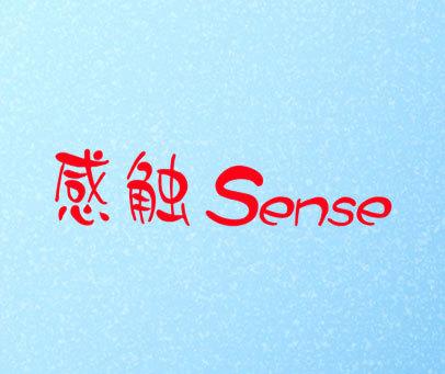 感触-SENSE