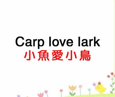 小鱼爱小鸟-CARP LOVE LARK