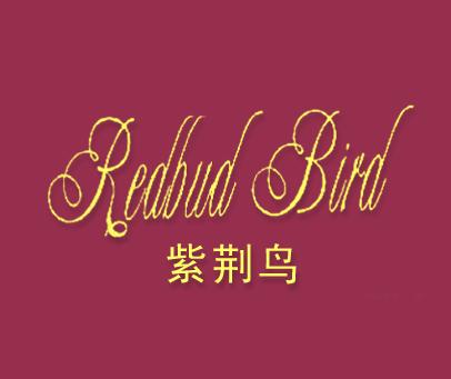 紫荆鸟-REDBUDBIRD
