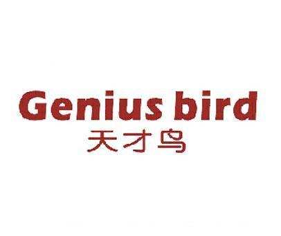 天才鸟-GENIUSBIRD