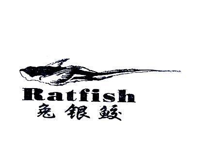兔银鲛-RATFISH