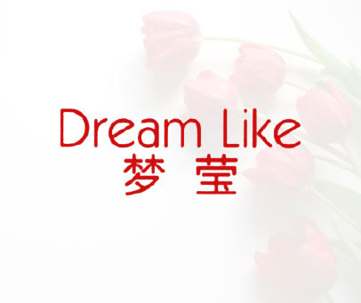 梦莹-DREAM LIKE
