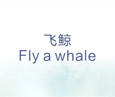 飞鲸-FLY A WHALE