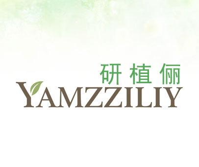 研植俪-YAMZZILIY