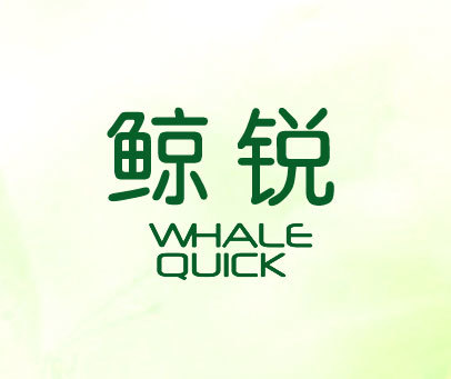 鲸锐-WHALE-QUICK