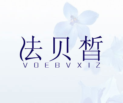 法贝皙-VOEBVXIZ