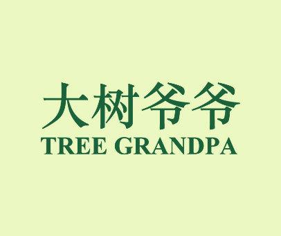 大树爷爷-TREE GRANDPA