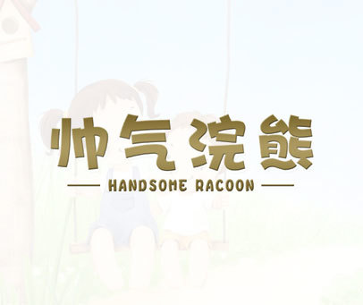 帅气浣熊-HANDSOMERACOON