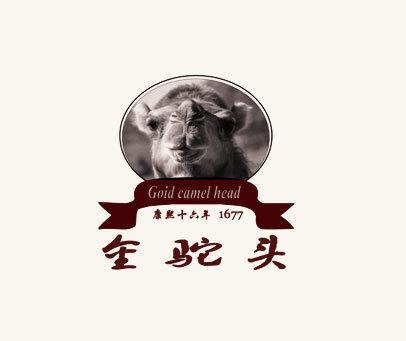 金驼头-康熙十六年-GOID-CAMEL-HEAD-1677