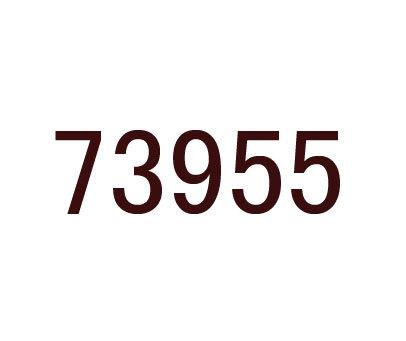 73955