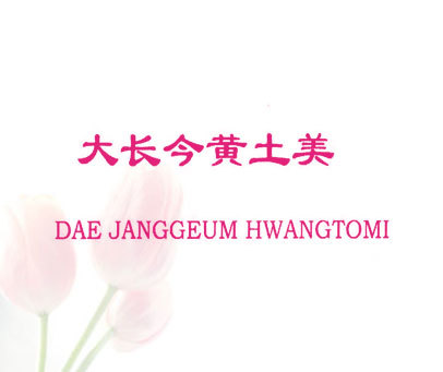 大长今黄土美-DAE JANGGEUM HWANGTOMI