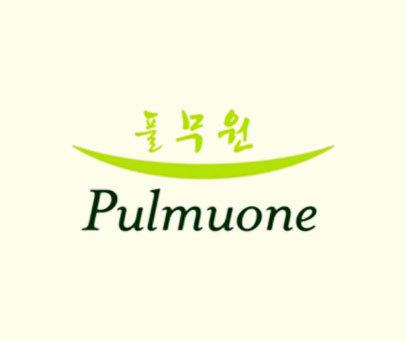 PULMUONE
