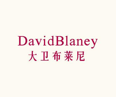 大卫布莱尼-DAVIDBLANEY