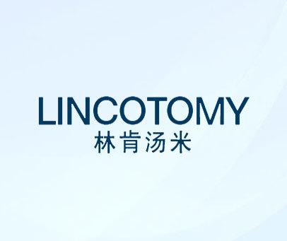 林肯汤米-LINCOTOMY