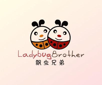 瓢虫兄弟-LADYBUGBROTHER