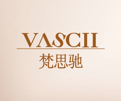 梵思驰-VASCII