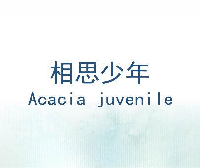相思少年-ACACIA-JUVENILE