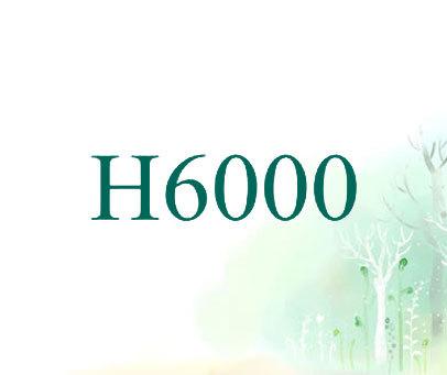H-6000