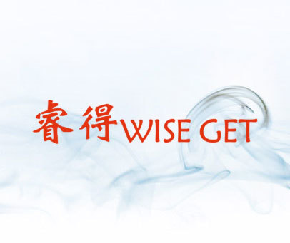 睿得-WISE GET