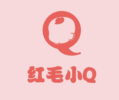 红毛小 Q