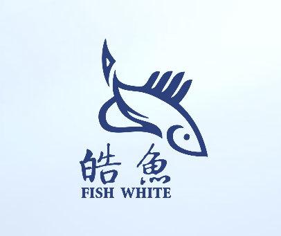 皓鱼-FISH-WHITE