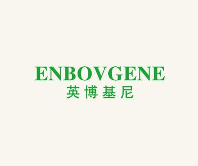 英博基尼-ENBOVGENE