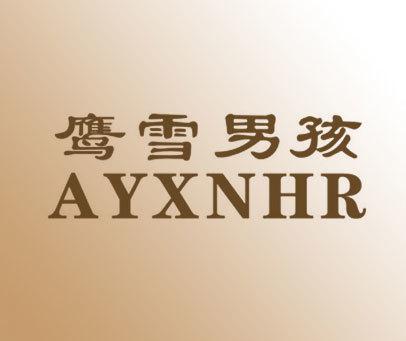 鹰雪男孩-AYXNHR