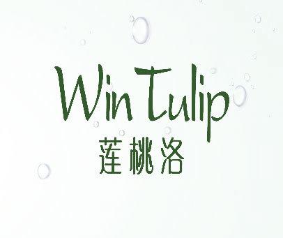 莲桃洛-WIN-TULIP