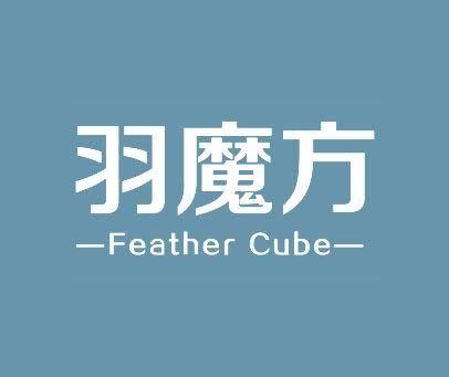 羽魔方-FEATHER-CUBE