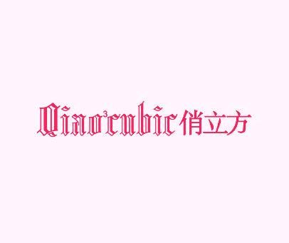 俏立方-QIAO-3-CNHIC