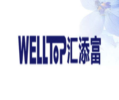 WELL TOP-汇添富