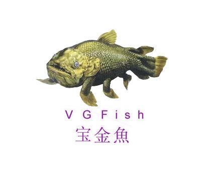 宝金鱼-VGFISH