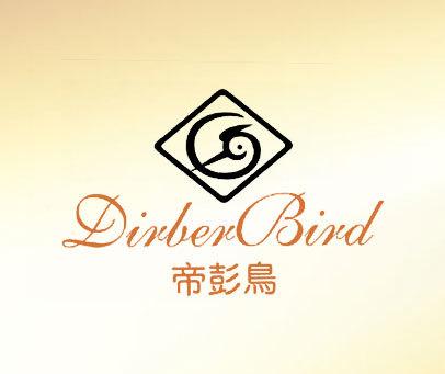 帝彭鸟-DIRBER-BIRD