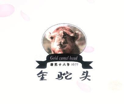 GOID CAMEL HEAD-金驼头 康熙十六年 1677