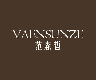 范森哲-VAENSUNZE