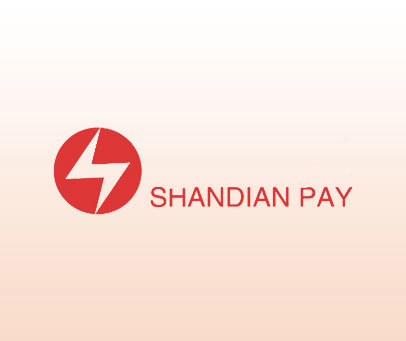 SHANDIAN-PAY