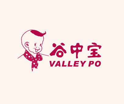 谷中宝-VALLEY-PO