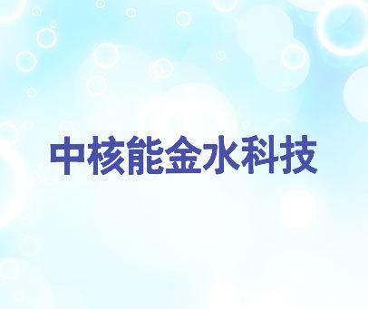 中核能金水科技