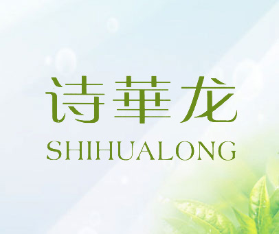 诗华龙- SHIHUALONG