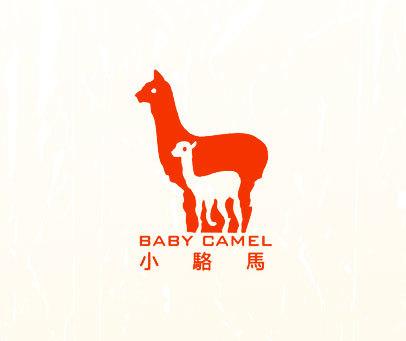 小骆马-BABY-CAMEL