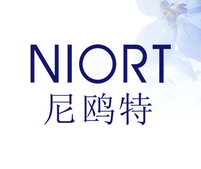 尼鸥特-NIORT